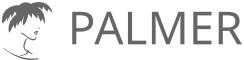 Palmer School Retina Logo